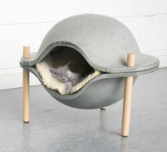 We understand the difficulty you face while choosing the correct type of bed for your pet so look at these Cool Cat Beds Ideas for your Four-Legged Buddy Cement Art, Concrete Crafts, Cool Cat Beds, Cool Cats, Animal Gato, Cat Perch, Foster Kittens, Ideias Diy, Cat Sleeping