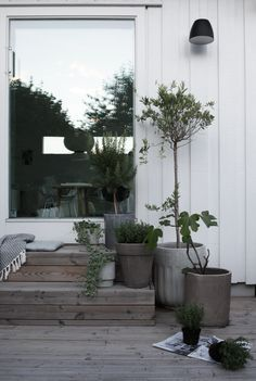 The concrete planters fit the mood of the weathered wood on these steps. The concrete planters fit t Outdoor Rooms, Outdoor Gardens, Outdoor Living, Patio Plants, House Plants, Concrete Planters, Wall Planters, Succulent Planters, Succulents Garden