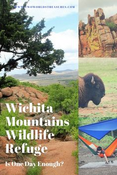 We spent a night at Wichita Mountains Wildlife Refuge in Oklahoma; camping, hiking, enjoying the beauty of the refuge. Usa Travel Guide, Travel Usa, Travel Tips, Travel Destinations, Travel Ideas, Travel Stuff, Canada Travel, Travel Nursery, Oklahoma State University