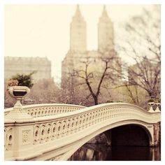 NYC Photography Central by EyePoetryPhotography ❤ liked on Polyvore featuring backgrounds, places and filler
