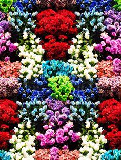 蜷川実花のグラフィックテキスタイルによるファッションブランド、M / mika ninagawa の最新コレクション。