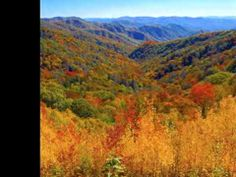 Chet Atkins - Tennessee Waltz