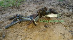Metal crab by Michelle Anderson - living existence metal artwork