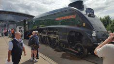 Steam Engine, Monster Trucks, Engineering, Train, Vehicles, Car, Technology, Strollers, Vehicle