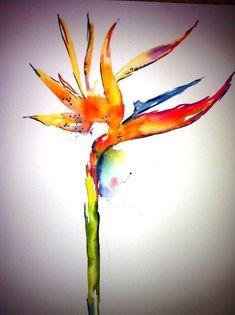 Birds of Paradise Birds of Paradise Painting by AngelicbyJones, $18.00