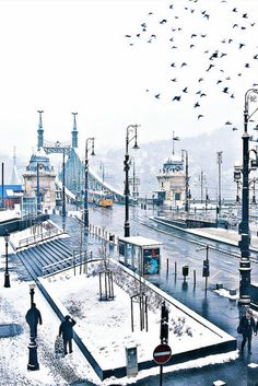 The Liberty Bridge (Szabadság híd) in Budapest, Hungary on a snowy day. Montenegro, Budapest Winter, Places To Travel, Places To See, Capital Of Hungary, Great Buildings And Structures, Modern Buildings, Modern Architecture, Dubai Skyscraper