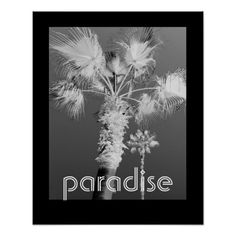 tropics poster black and white photography by Ann Powell with text at #zazzzle #photography #poster #posters #tropics #tropical #wallart