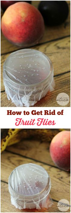 How to Get Rid of Fruit Flies - a simple tip that really WORKS!