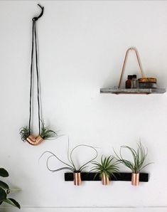 cactus,plantes,plants,déco,design,objet,accessoire,vert,green,home,outdoor,balcon,pot