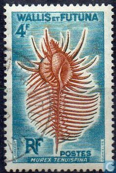 1962 Wallis and Futuna - Shellfish