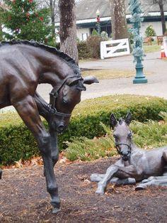 Kentucky Horse Park, Ky