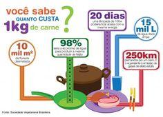 O que é infográfico 2