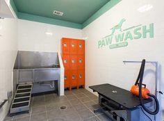 Give your pets a bath at the Paw Wash at AMLI Campion trail apartments in Las Colinas! Dog Grooming Salons, Dog Grooming Business, Pet Grooming, Grooming Shop, Pet Washing Station, Pet Station, Indoor Dog Park, Dog Spa, Pet Hotel