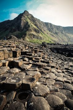 The Giant Causeway in Northern Ireland. Basalt.