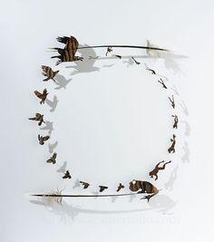 Croaks . turkey feathers . 27 by 24 inches . Chris Maynard . featherfolio