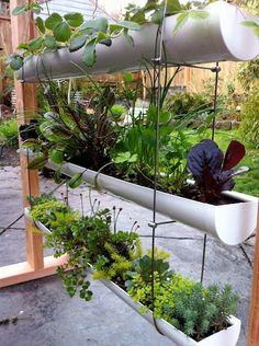 1000 Images About Diy Gutter Gardens On Pinterest