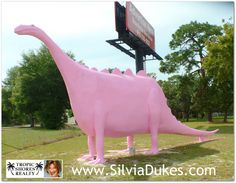 Pink Dinosaur in Spring Hill Florida Photo by Silvia Dukes
