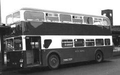 Bus Coach, Busses, Coaches, Transportation, England, Trainers