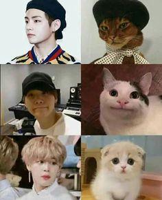 Bts memes Bts funny Bts Bts wallpaper Jimin Bts Bts photos jealous al animallov. Bts Jimin, Bts Taehyung, Bts Memes Hilarious, Bts Funny Videos, Namjoon, Theme Bts, Bts Cute, Vkook Memes, Bts Playlist
