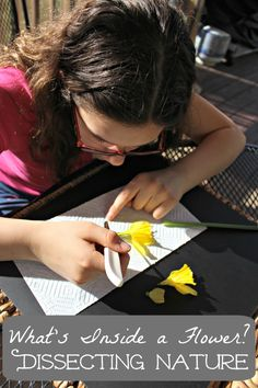 Learn about the parts of a flower and pollination - great botany & STEM lesson!