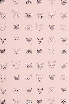 Meow.    Cats Wallpaper - Anthropologie.com