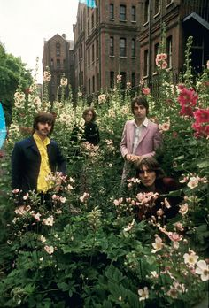 """The Beatles. I think of the line """"Sitting in an English Garden, waiting for the Sun..."""" when I look at this."""