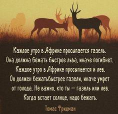 #этноспб #жизнь #мудрость