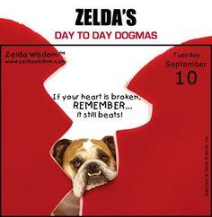Zelda's Day To Day Dogmas 09-10-13