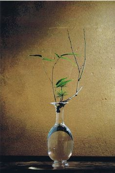 Ikebana...The Art ( and Philosophy ) Of Displaying Flowers And Leaves,some Branches too....The exquisite Beauty of Simplicity......