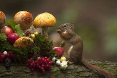 search-bonsoni-on-google:  La grande bouffe by Andre Villeneuve http://ift.tt/1ZXMlbG -