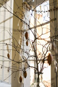 Inspiration:the silhouette of birch branches Spite House, Birch Branches, Pinecone Ornaments, Christmas Decorations, Holiday Decor, Blue Design, Plant Hanger, Women's Retreat, Design Inspiration