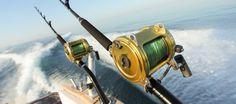 Sea fishing in Cornwall