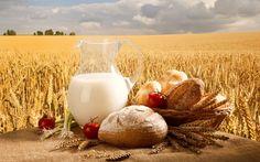 hd field of wheat wallpaper