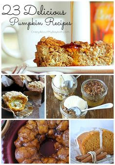 Pumpkin Recipes Roundup: 23 Delicious Pumpkin Recipes -- Oh my gosh!!!! I love pumpkin! I am def going to try some of these recipes!