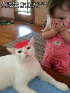This girl for her reaction to making the family cat a princess- 29 Kids Who Will Make You Not Hate Kids Funny Kids, Funny Cute, Funny Shit, The Funny, Hilarious, Funny Stuff, Crazy Cat Lady, Crazy Cats, I Love Cats