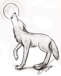 wolf drawing baby - Google-Suche
