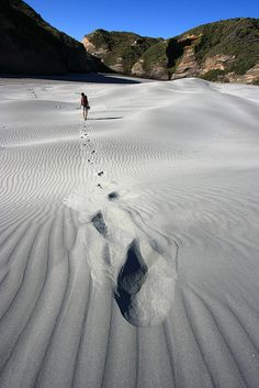 Sand Dunes - Wharariki Beach, New Zealand