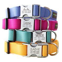 engraved buckle nylon dog collar