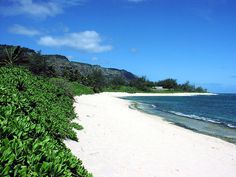 This is my favorite vacation spot, my favorite beach, and my favorite place to be with my family!!....... North Shore, Oahu, Hawaii