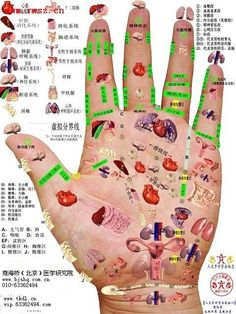 Massage Therapy Certification, Remedies For Bee Stings, Acupressure Therapy, Reflexology Massage, Chinese Medicine, Alternative Medicine, Health Remedies, Health Tips, Yoga