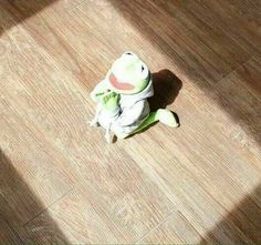 41 ideas for memes de amor muppets Memes Estúpidos, New Memes, Jim Henson, Sapo Kermit, Reaction Pictures, Funny Pictures, Funny Kermit Memes, Hilarious Memes, Sapo Meme