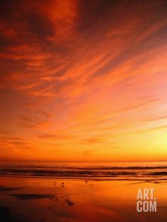 Southern California Sunset at Beach Photographic Print by Mick Roessler at Art.com