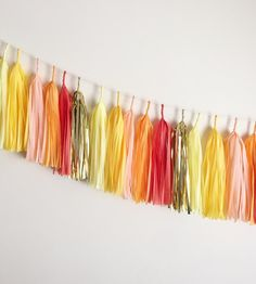Bright Tassel Garland by Fancy Face Studio	 on Scoutmob