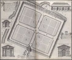 https://flic.kr/p/ouSopd | Hortus Botanicus | For info & links on David Loggan's book from 1675, please see: bibliodyssey.blogspot.com/2014/09/oxonia-illustrata.html