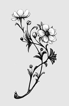 Apple Blossom black