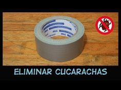 ¿Harta de las dichosas cucarachas que estropean la paz de tu hogar? Mira este truco The More You Know, Good To Know, Limpieza Natural, Home Hacks, Organization Hacks, Face And Body, Clean House, Helpful Hints, Diy Home Decor