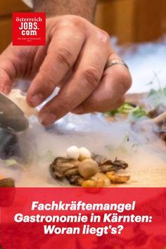 Der Fachkräftemangel in der Gastronomie wird in Österreich immer größer. 38 % aller Unternehmen in Kärnten sind zurzeit sehr stark von einem Fachkräftemangel betroffen. Aber woran könnte das liegen und was können Gastronomen dagegen tun?
