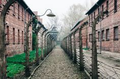 Cracovie : la ville, les mines de Wieliczka et Auschwitz — Black and Wood Camping, Europe Destinations, Krakow, Eastern Europe, Avril, Wwii, Occasion, Ainsi, Places To Go