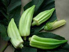 David's Garden Seeds Okra Beck's Big Buck D69120 (Green) 25 Organic Heirloom Seeds