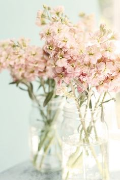 Pretty flowers in mason jars